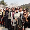 2012-04-05 關西萬株櫻花海‧世界遺產伊勢路‧合歡之鄉度假村‧三大和牛美食宴八日