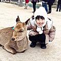 2013-02-13 日本地中海小豆島‧世界文化遺產宮島‧道後六日
