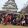 2013-03-27 平安千年遊古都‧浪漫賞櫻花見專車五日