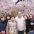 2013-03-28 獨家DHC赤澤溫泉迎賓館‧星野名宿 界 熱海‧東京浪漫花見‧東京椿山莊五日