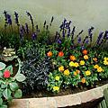 園藝造景系列