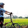 2012.11.08&09 看見台灣+單車+黃小鴨