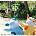 2009.01.02 花蓮縣_楓林步道