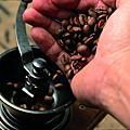 茉莉森-咖啡豆
