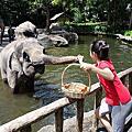 20160223 Singapore Zoo