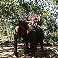 龍坡邦(6)騎大象