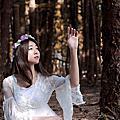 綠野仙蹤-小紫@九天黑森林