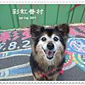 2011彩虹眷村&月光森林