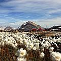 格陵蘭 Greenland Kulusuk 2012-08