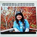 2010vow個人化桌曆