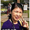 2013菊世無雙~菊展