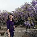 淡水~紫藤咖啡館