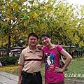 2014黃金雨~阿勃勒