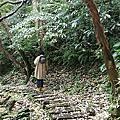 2019/5/3土城桐花季_PIXNET-RECOVERY
