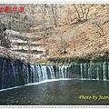 105年初訪日本輕井澤、1130溫泉飯店、東京