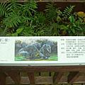 動物園參訪