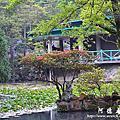 2013前山公園藍鵲