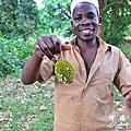 桑吉巴島香料之旅