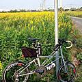 2012單車趴趴走