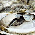 ▍2013。4月▍宜蘭。狀圍〃嘉澎碳烤澎湖牡蠣