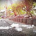 嘉義-竹崎公園
