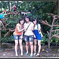 09112008新加坡zoo~