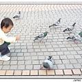 20091017動物園.微風看鴿子