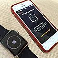 Apple Watch 42mm 不鏽鋼運動錶帶