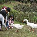 20140216 桃園八德埤生態公園