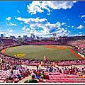 樂天KOBO Stadium B 篇(球員 內外野座席)