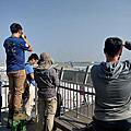 桃園機場第二航廈觀景台