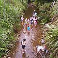 覓蜆抓泥鰍童年回憶之旅