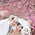 蓁愛婚紗攝影~宇禎精選2