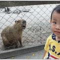 20101017-台南頑皮世界