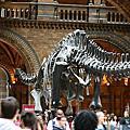 2011年7月24日 Natural History Museum & ISIS