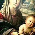 2015 Aug. Uffizi Gallery