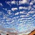 2009, 11月 23th, 新竹, 天空的表情 !!
