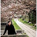 2010京都賞櫻之哲學之道