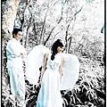 JOJO婚紗 ♥ 外拍景點-清香三義慈濟茶園