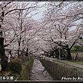 2016.04.02-04.03 京阪奈