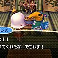 3DS 動森日誌