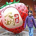 20110212大湖採草莓