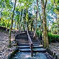 下坪熱帶植物園區