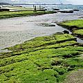 2008-0308~0309 和平島及外木山
