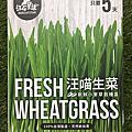 台灣DogCatStar汪喵星球-汪喵生菜新鮮小麥草栽種盒