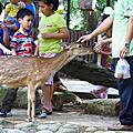 20100516 - 新竹動物園