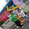 20090322林內紫斑蝶