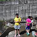南投梢楠園民宿露營區