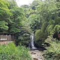 【新竹/橫山】豐鄉瀑布+顯伯公百年古廟