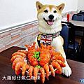 台中楊大腸蚵仔蝦仁麵線-桃園中正店